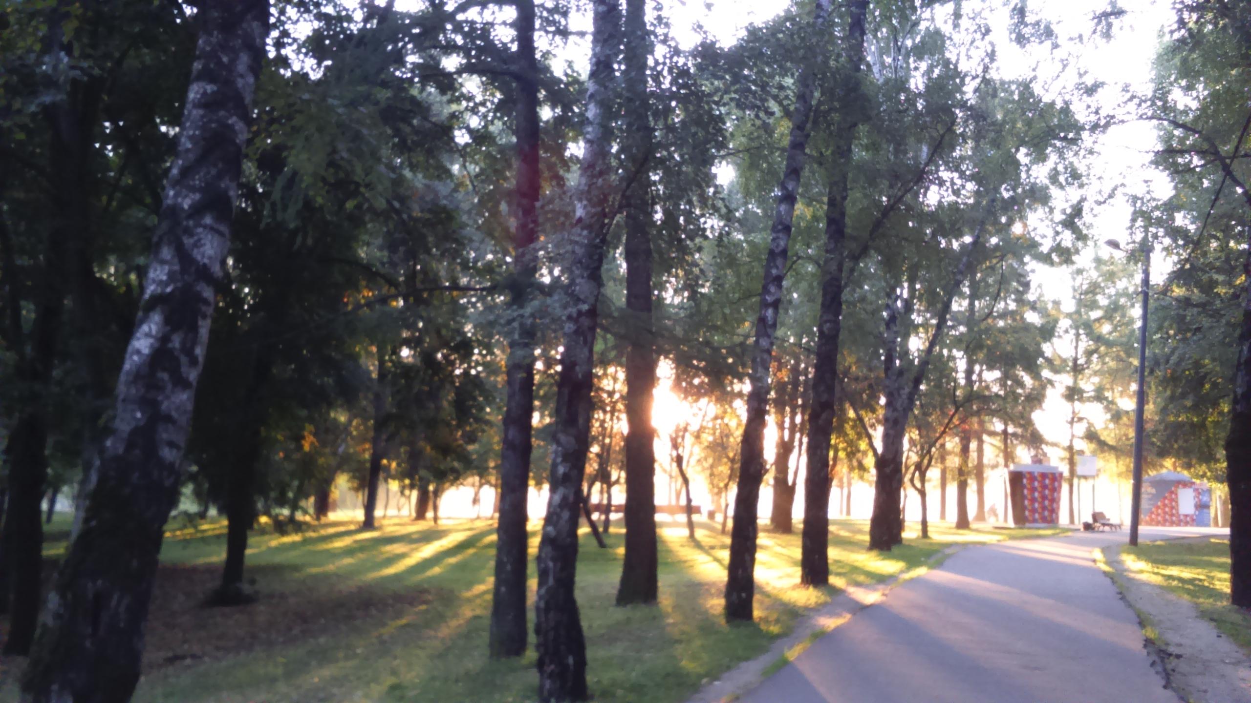 Рассвет в Москве. Фото автора